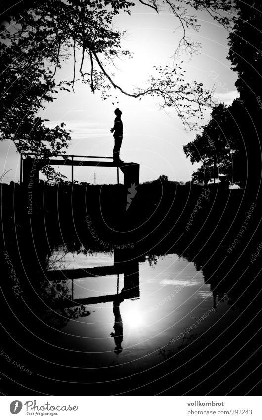 Freiheit II Mensch Himmel Natur Jugendliche Wasser Baum Landschaft Erholung Wald Junger Mann Glück Luft Zufriedenheit frei Brücke Fluss