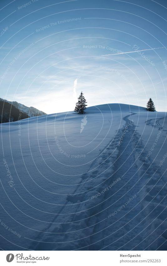 Bergwärts wandern Schneeschuhwandern Schneeschuhe Himmel Winter Schönes Wetter Wald Felsen Alpen Schneebedeckte Gipfel ästhetisch frei kalt natürlich blau weiß