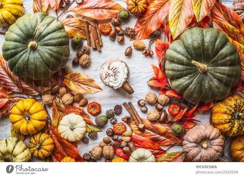 Sortiment bunter Bauernkürbisse mit Becher heißer Schokolade, Nüssen, Gewürzen und Herbstblättern, Draufsicht. Herbstliches Stilleben farbenfroh Bauernhof