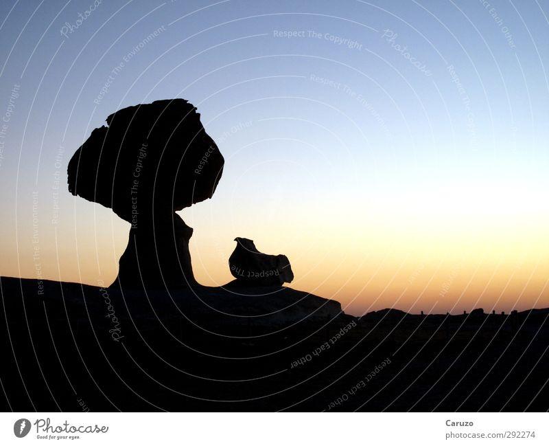 Mushroom + Chicken Himmel Natur blau schwarz Stein Felsen außergewöhnlich warten frei Zeichen Afrika Wolkenloser Himmel Sehenswürdigkeit Ägypten überbevölkert Weiße Wüste