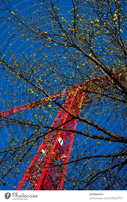 Baustelle im Frühling drehkran Froschperspektive Gebäude Gewerbe Gewerkschaft Himmel Himmel (Jenseits) Blauer Himmel himmelblau Industrie Kran Montage
