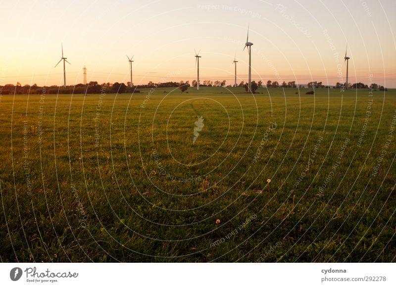 Windkraft im Abendlicht Himmel Natur Sommer Landschaft Umwelt Wiese Leben Bewegung Wege & Pfade Freiheit Horizont Energiewirtschaft mehrere Schönes Wetter
