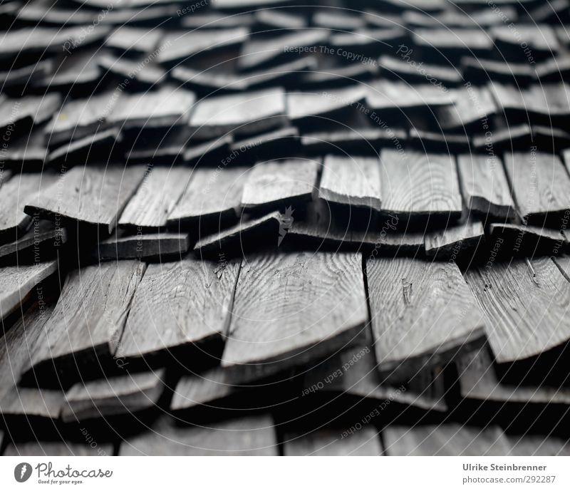 Alte Häuser - Jungsteinzeit Dach Natur Stadt Haus kalt Wärme Holz grau liegen Wohnung Tourismus Sicherheit Schutz Zusammenhalt Hütte Holzbrett