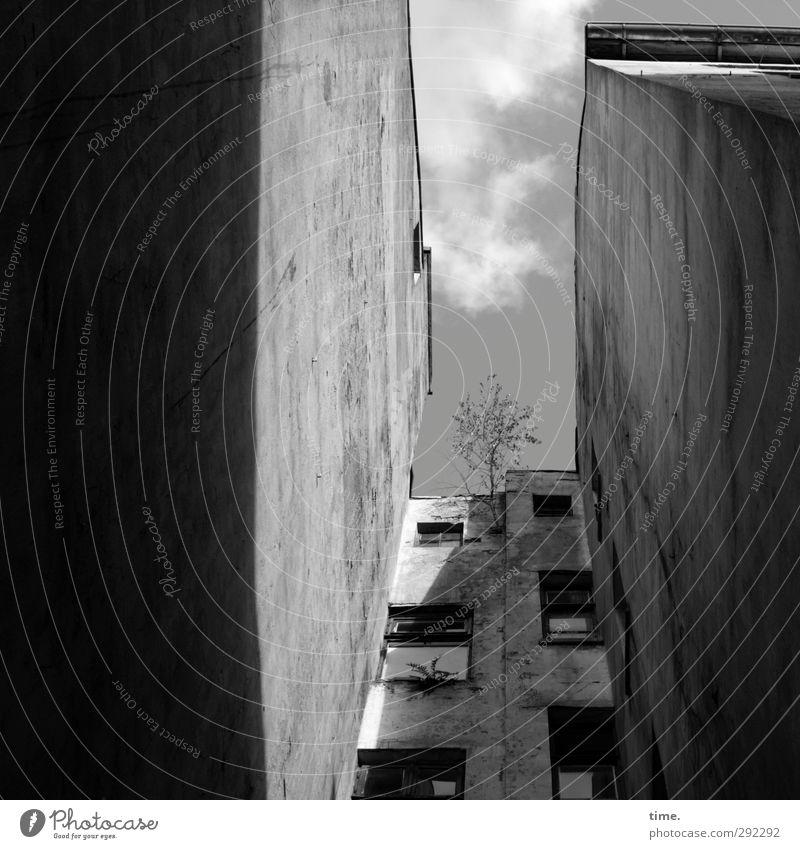 Alte Häuser | Hinterhofidyll Himmel Stadt Baum Wolken Haus Fenster dunkel Wand Architektur Mauer Gebäude Armut Hochhaus Schönes Wetter Perspektive kaputt