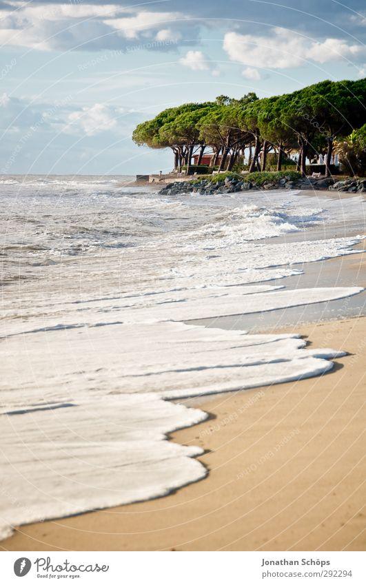 Korsika I Natur Ferien & Urlaub & Reisen Sommer Baum Meer Landschaft Strand Erholung Umwelt Ferne Freiheit Schwimmen & Baden Wellen Insel Wellness Lebensfreude