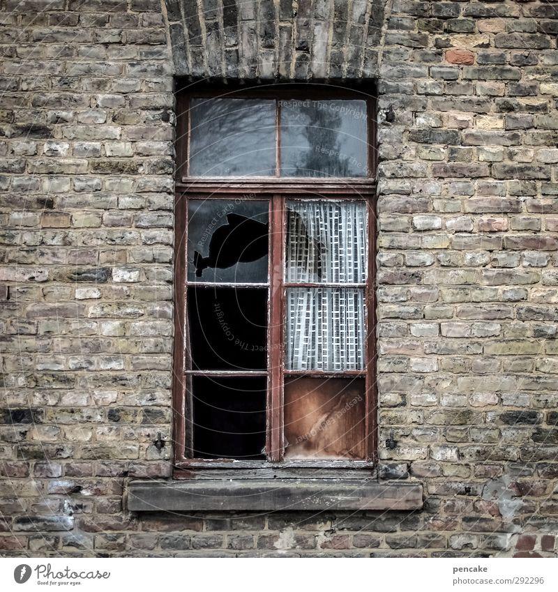 alte häuser | zugluft Kleinstadt Menschenleer Haus Mauer Wand Fenster Gefühle Stimmung Verfall Vergänglichkeit Wandel & Veränderung Reichtum Häusliches Leben
