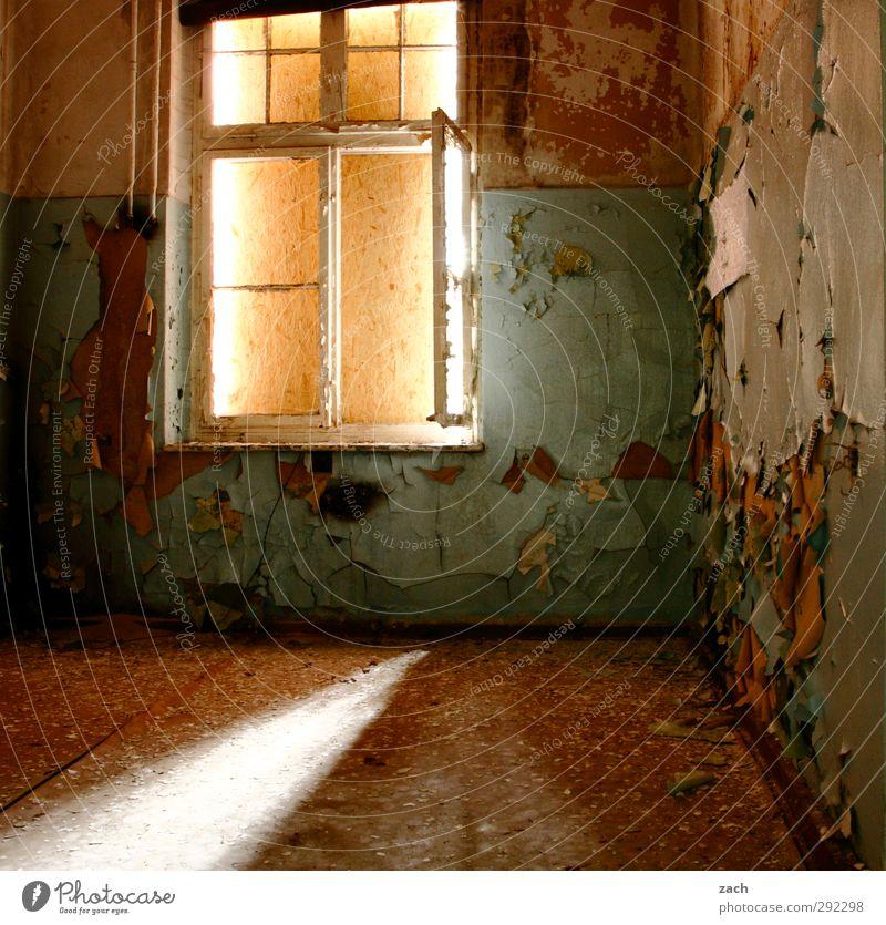 Alte Häuser | room without a view Haus Ruine Gebäude Architektur Mauer Wand Fassade Fenster Beton Häusliches Leben alt kaputt braun Verfall Vergänglichkeit