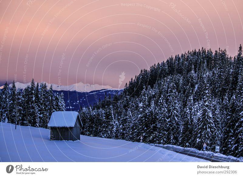 Alte Häuser | 1ZKB + Schnee blau weiß Pflanze Baum Winter Wolken Landschaft schwarz Haus Berge u. Gebirge Eis rosa leuchten Schönes Wetter Frost
