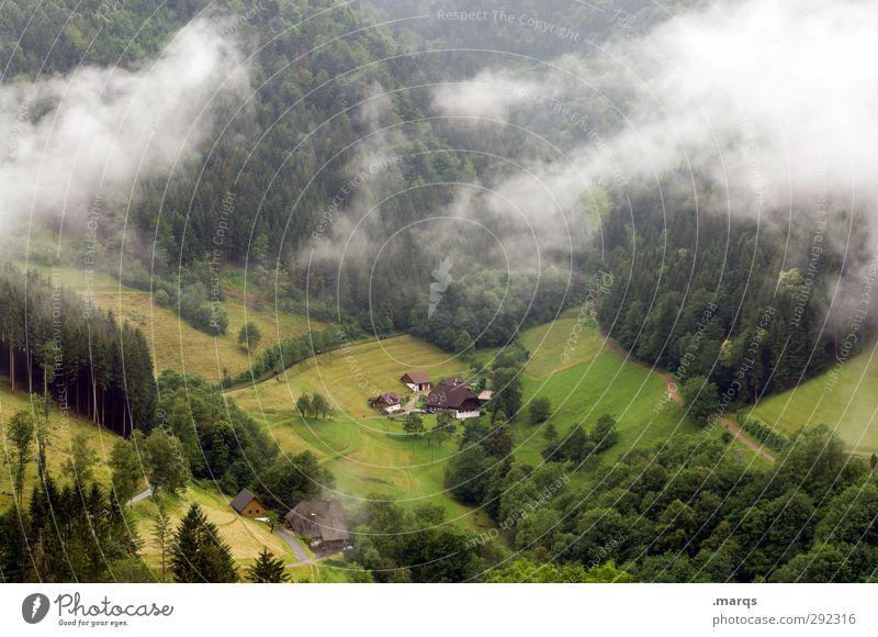 Alte Häuser   Bauernhof Natur schön Landschaft Wald Umwelt Wiese Berge u. Gebirge Herbst Stimmung Klima Nebel Tourismus Perspektive Landwirtschaft Hügel