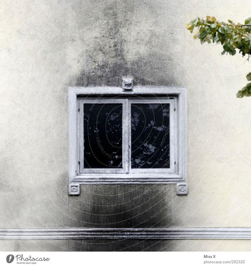 Alte Häuser   Burning down the house alt Fenster Wand Mauer Fassade Brand Feuer brennen Ruß