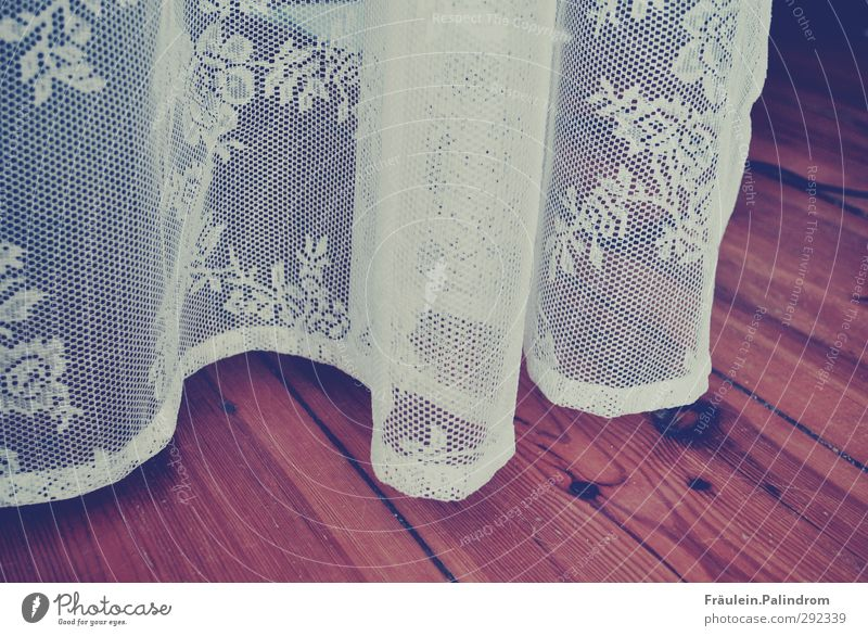 vorhang auf. Holz hängen Leichtigkeit Spitze Gardine Vorhang Flur Parkett Bodenbelag Schweben weiß durchsichtig Stoff Blume Gedeckte Farben Innenaufnahme Muster
