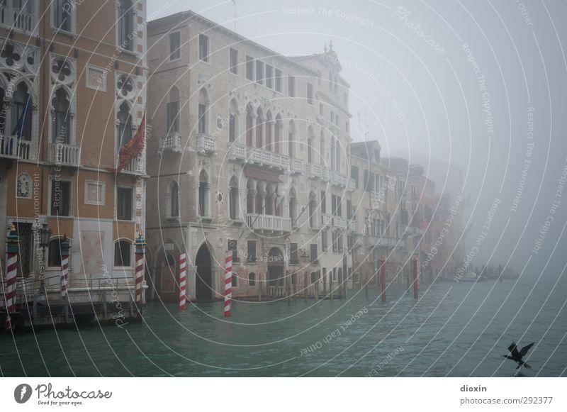 La Serenissima Ferien & Urlaub & Reisen Wasser Stadt Meer Winter Haus kalt Architektur Küste Gebäude außergewöhnlich Fassade authentisch Tourismus nass Italien