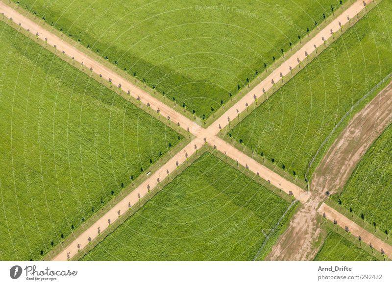 Kreuz grün Baum Landschaft Wiese Garten Park Perspektive Kreuz Sehenswürdigkeit Xanten
