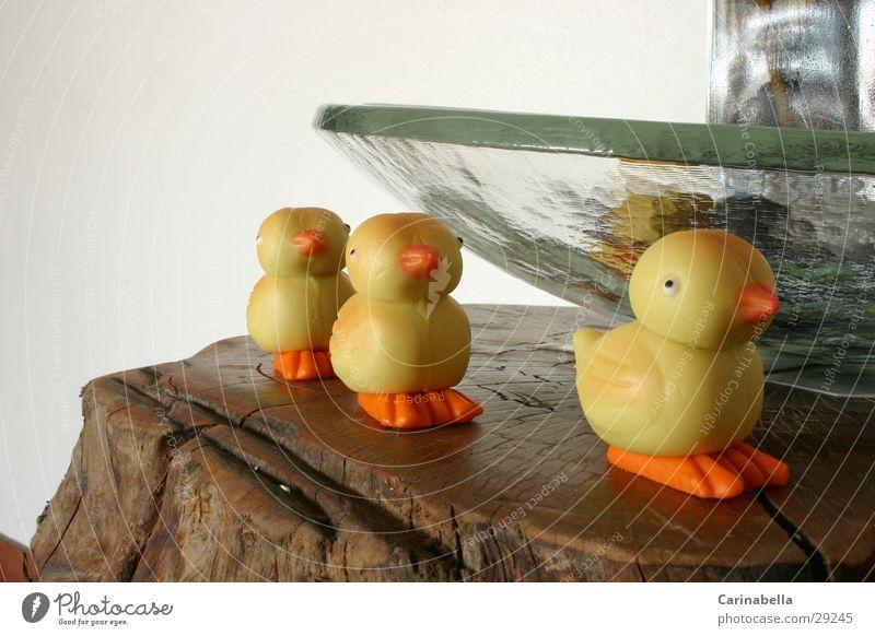 Osterenten Ente