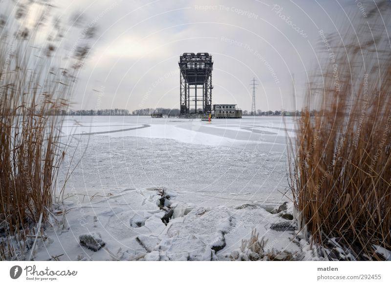 ruinös Landschaft Pflanze nur Himmel Wolken Gewitterwolken Horizont Winter schlechtes Wetter Eis Frost Gras Küste Flussufer Menschenleer Haus Industrieanlage