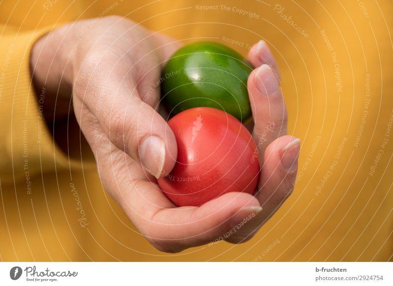 Zwei bunte Eier in der Hand halten Lebensmittel Ernährung Bioprodukte Gesundheit Gesunde Ernährung Mann Erwachsene Finger wählen berühren Essen Feste & Feiern