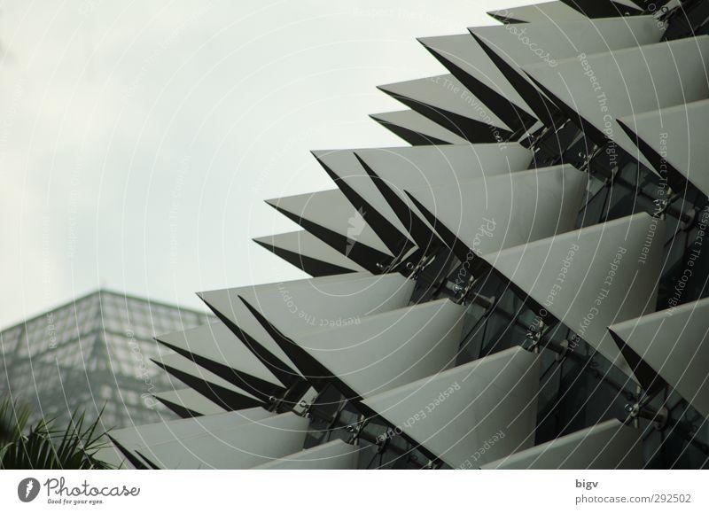 Esplanade Singapore Architektur Fassade modern stachelig Farbfoto Gedeckte Farben Außenaufnahme Nahaufnahme Strukturen & Formen Menschenleer Textfreiraum links