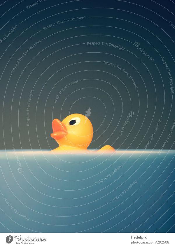 Herr Müller-Lüdenscheidt, ich bade immer mit einer Ente. blau Wasser Meer Tier Freude gelb lustig Spielen klein Schwimmen & Baden Vogel Fröhlichkeit Badewanne
