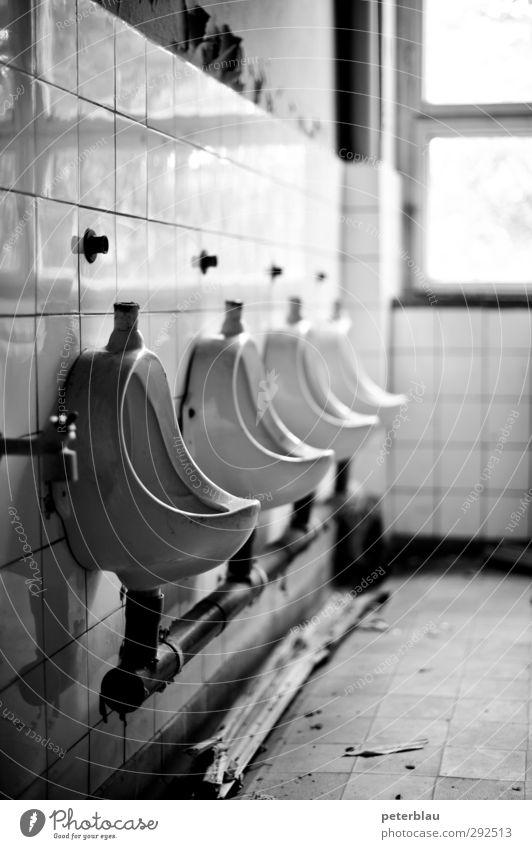 Klossal Innenarchitektur Bad Ruine alt kaputt schwarz weiß Verfall Bruchbude Toilette Pissoir Schwarzweißfoto Innenaufnahme Tag Kontrast Schwache Tiefenschärfe