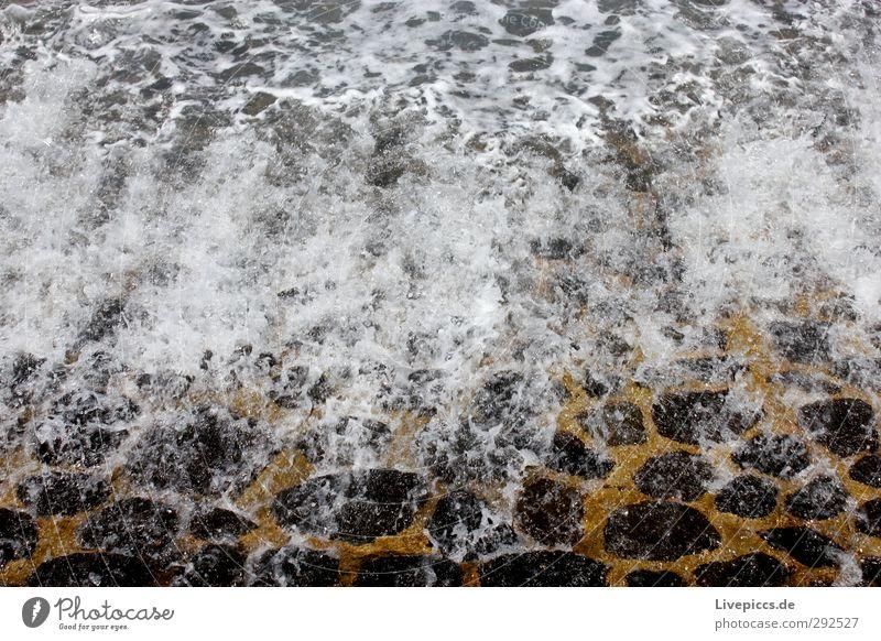 Strömungswechsel grün Wasser weiß schwarz gelb Umwelt Küste Stein Wassertropfen Fischerdorf