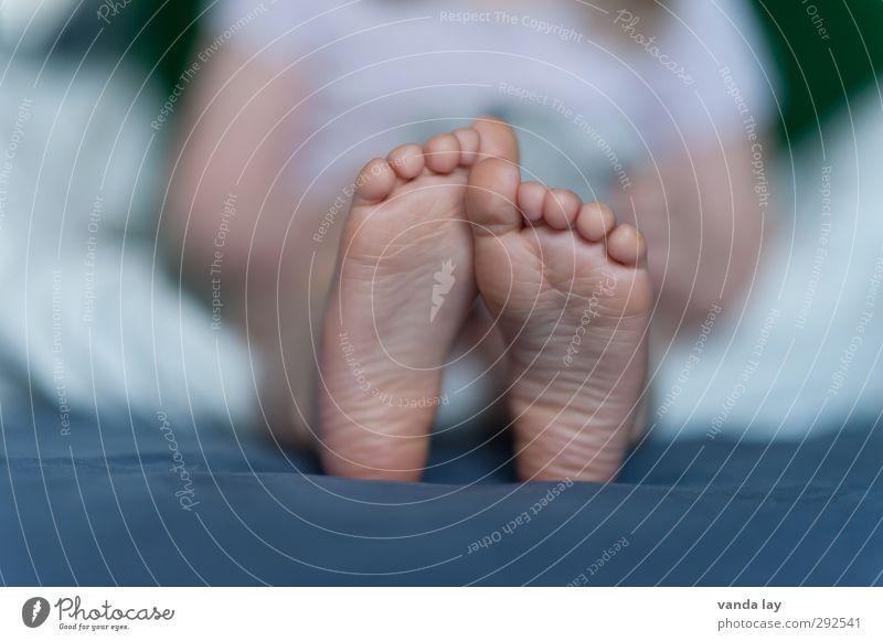 Kinderfüsse Fuß 1 Mensch 1-3 Jahre Kleinkind Kindheit Kinderfuß Fußsohle Zehen Bett Detailaufnahme Haut Farbfoto Innenaufnahme Menschenleer Textfreiraum links