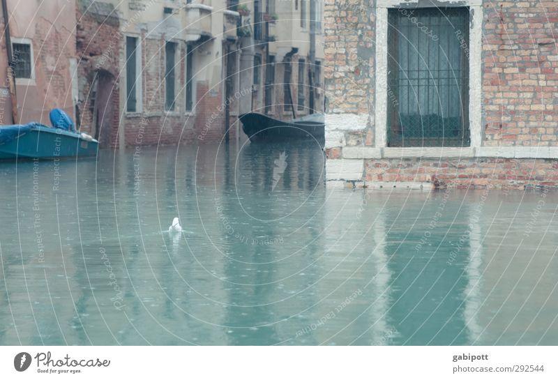 und der Regen Regen Regen fiel Wasser kalt grau Schwimmen & Baden Wasserfahrzeug nass Venedig Wassermassen Kanal Überschwemmung