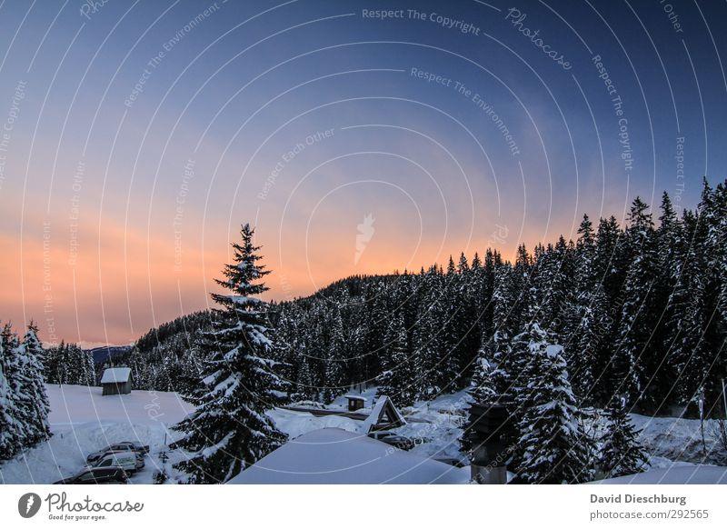 Licht am Horizont Himmel blau Ferien & Urlaub & Reisen weiß Pflanze Baum Winter Wolken Landschaft schwarz Wald Ferne Berge u. Gebirge Schnee Eis orange