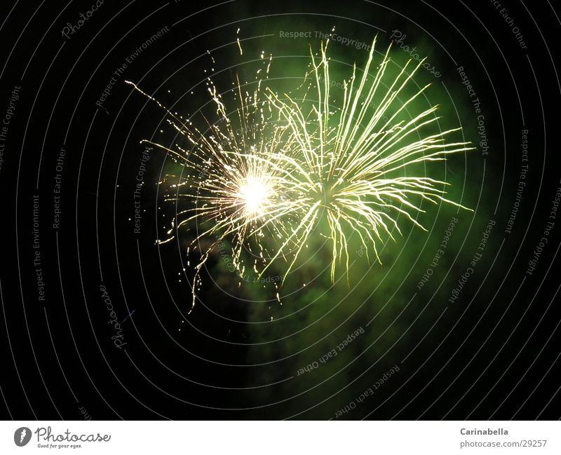 Feuerwerk Nacht grün Freizeit & Hobby Feste & Feiern Beleuchtung Feuerwerkrakete