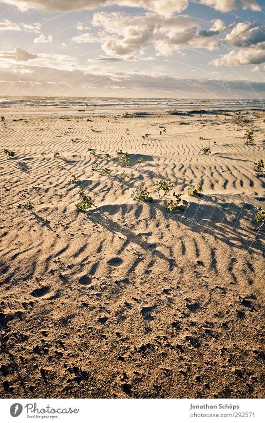 Korsika VIII Ferien & Urlaub & Reisen Freiheit Sommer Sommerurlaub Sonnenbad Strand Meer Insel Wellen Umwelt Natur Landschaft Sandstrand Mittelmeer Farbfoto