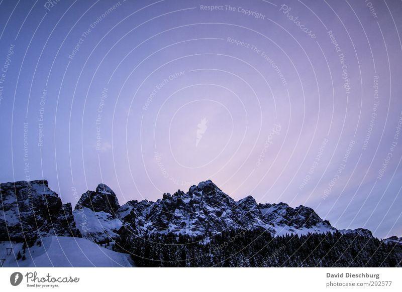 Licht am Horizont II Himmel Natur blau Ferien & Urlaub & Reisen weiß Pflanze Baum Winter Landschaft schwarz Wald Berge u. Gebirge Schnee Felsen Eis wandern