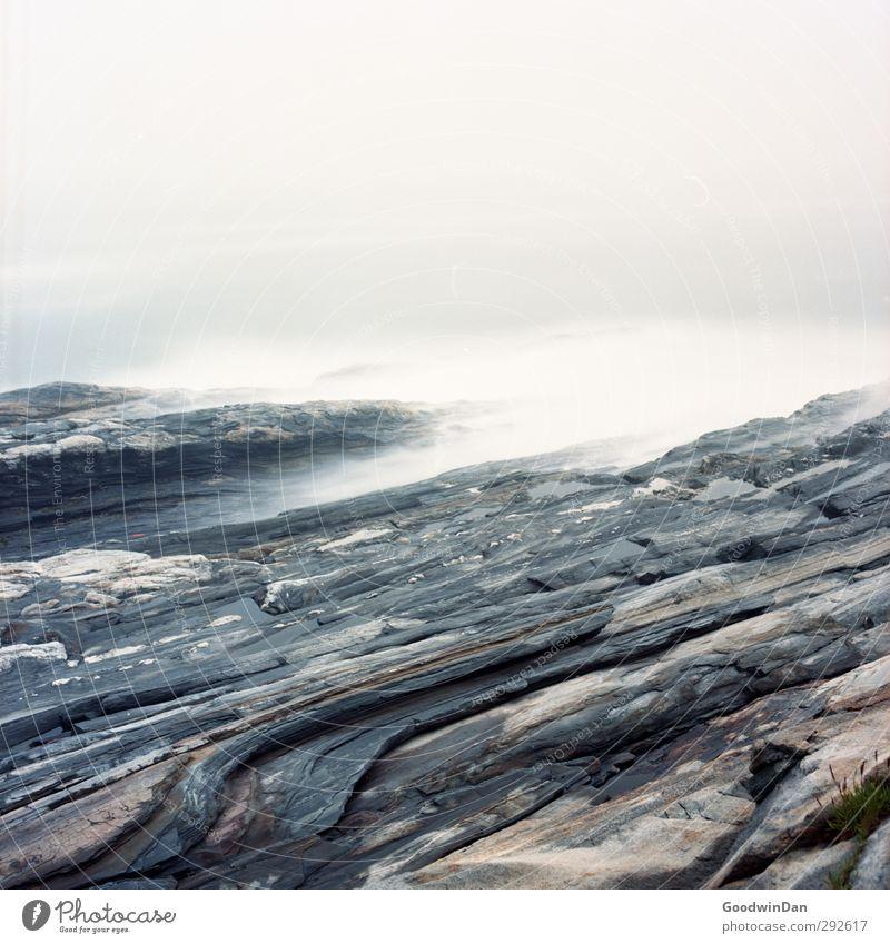 Von Wasser gezeichnet. Umwelt Natur Urelemente Erde Sommer Klima Wetter Nebel Regen Wellen Küste Fjord Meer alt bedrohlich authentisch Flüssigkeit kalt trist