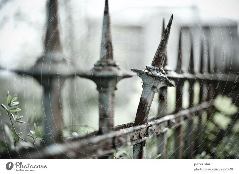 Zacke aus dem Zaun brechen Zaunlücke Knick Niete Nieten Spitze Farbfoto Gedeckte Farben Außenaufnahme Menschenleer