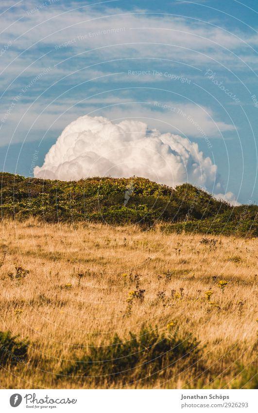 Feld mit Wolke in Sussex, Südengland, Großbritannien Umwelt Natur Landschaft Himmel Wolken Sommer Schönes Wetter Pflanze blau braun gelb Wolkenbild Wolkenberg