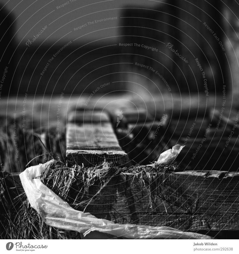 Alles was bleibt Umwelt Natur Landschaft Erde Wasser außergewöhnlich bedrohlich grau Schwarzweißfoto Menschenleer Unschärfe Weitwinkel