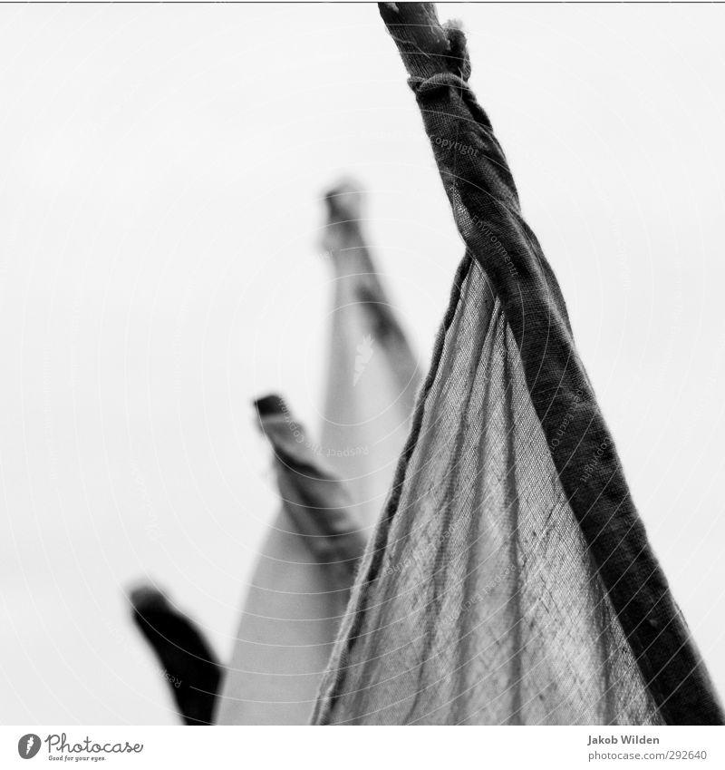 Fahnen im Wind Design Dekoration & Verzierung Holz Zufriedenheit Sehnsucht Heimweh Schwarzweißfoto Außenaufnahme Detailaufnahme abstrakt Muster