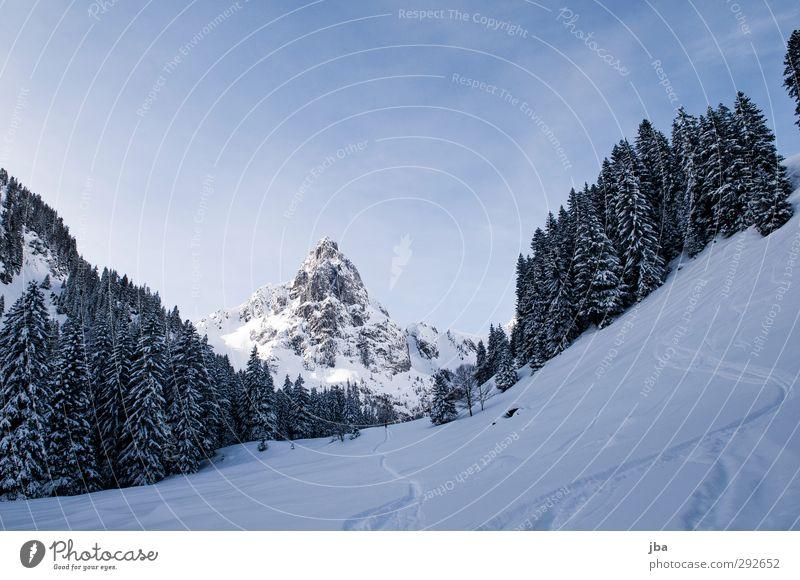 Gumfluh Landschaft ruhig Winter Wald Berge u. Gebirge Umwelt Wege & Pfade Schnee Sport Felsen wandern Ausflug Schönes Wetter Urelemente Gipfel Alpen