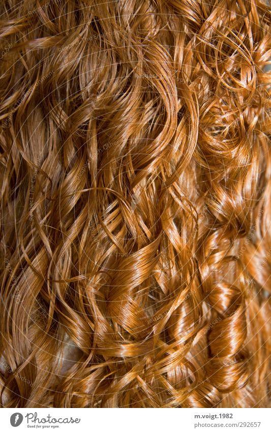 Rote Locken schön Haare & Frisuren feminin rothaarig langhaarig glänzend nass Sauberkeit Farbfoto Detailaufnahme Muster