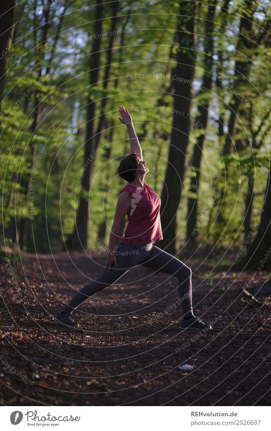 Yoga im Wald Lifestyle Gesundheit sportlich Fitness Wohlgefühl Zufriedenheit Erholung ruhig Meditation Freizeit & Hobby Sport Mensch feminin Junge Frau