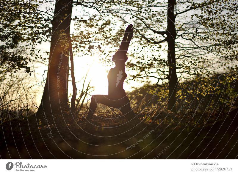 Yoga im Wald Mensch Natur Jugendliche Sommer Erholung ruhig Freude Gesundheit 18-30 Jahre Lifestyle Erwachsene Umwelt feminin Sport Bewegung