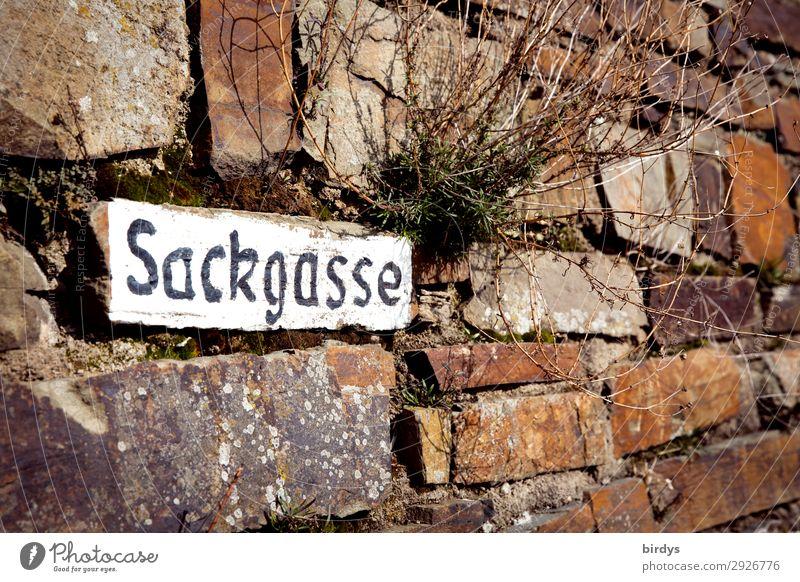 Sackgasse Mauer Wand Steinmauer Verkehrswege Schriftzeichen Schilder & Markierungen Hinweisschild Warnschild authentisch außergewöhnlich einfach einzigartig