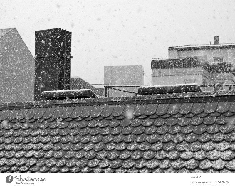 Einmal Zuckerwatte bitte Stadt Winter Haus kalt Wand Mauer Schneefall Eis Wetter Fassade Klima Schönes Wetter Dach Frost fallen rein