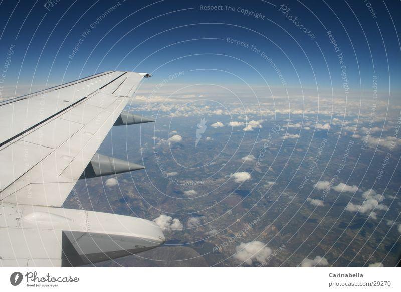 Zwischen Himmel und Erde Ferien & Urlaub & Reisen Wolken Flugzeug fliegen Horizont Erde Luftverkehr Tragfläche azurblau