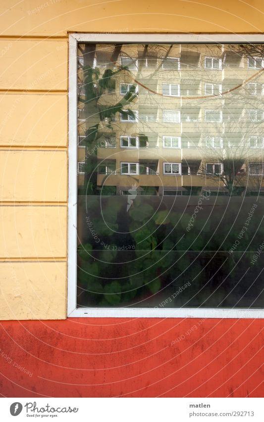Biosphäre Moabit Pflanze Grünpflanze Menschenleer Haus Hochhaus Gebäude Mauer Wand Fassade Fenster Straße Wachstum mehrfarbig grün orange Außenaufnahme