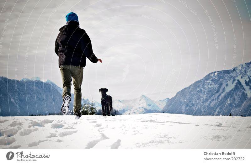 Spaziergang Hund Hundebesitzer Außenaufnahme Schnee Schneespur Schneeberg Wechte Tiertraining Hundetraining Berge u. Gebirge Landschaft Hügel Mountains Snow Dog