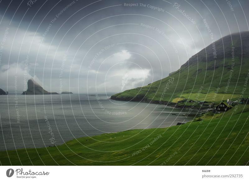 Da draußen ... Himmel Natur grün Wasser Meer Tier Wolken Landschaft Umwelt dunkel Berge u. Gebirge kalt Küste Felsen Horizont außergewöhnlich