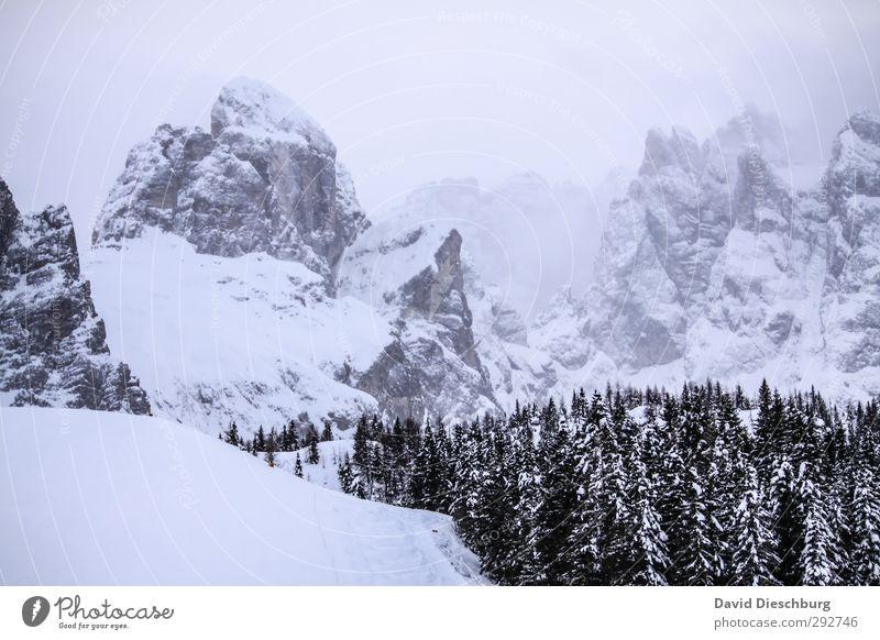 Ich bin heiter, die Berge sind wolkig Himmel blau Ferien & Urlaub & Reisen weiß Pflanze Baum Wolken Winter Landschaft schwarz Berge u. Gebirge Schnee Felsen Eis Nebel wandern
