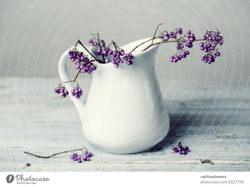 Stillleben Weiß&Lila Pflanze schön weiß Lifestyle kalt grau rosa frisch elegant Glas ästhetisch authentisch Sträucher Ast einfach