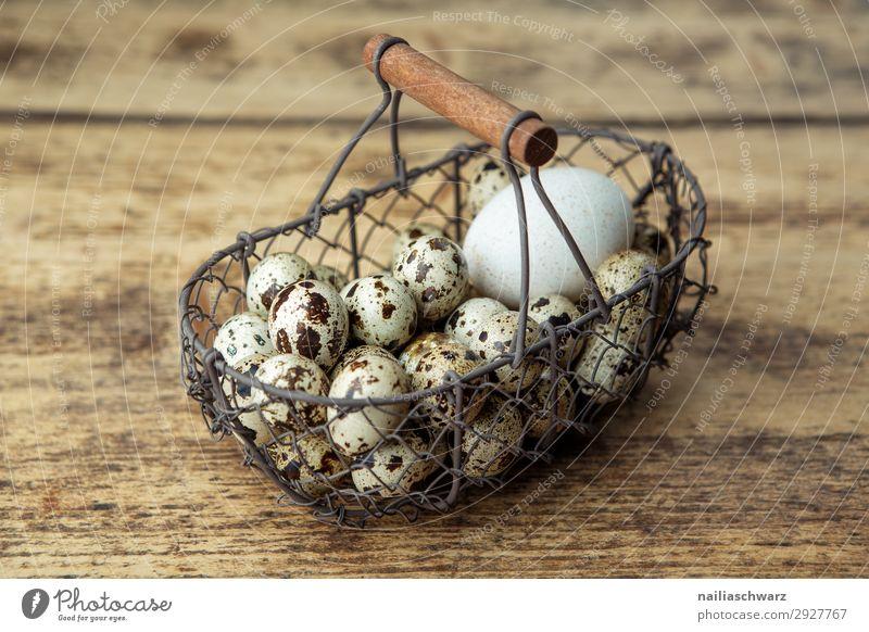 Perlhuhneier Lebensmittel Ei Ernährung Bioprodukte Vegetarische Ernährung Diät Lifestyle Gesundheit Gesundheitswesen Gesunde Ernährung Korb Drahtkorb