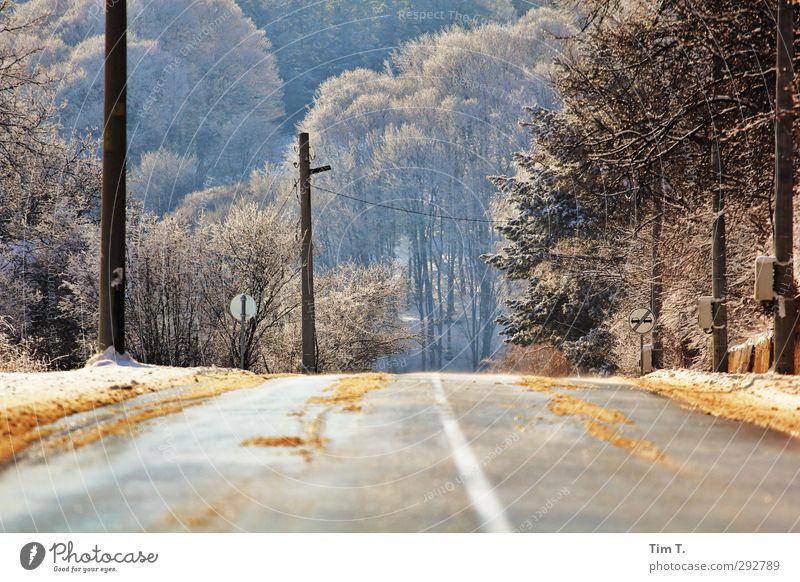 Bulgarien Umwelt Sonnenlicht Winter Schnee Baum Wald Verkehrswege Straßenverkehr Autofahren Einsamkeit Freiheit Landstraße Farbfoto Außenaufnahme Menschenleer