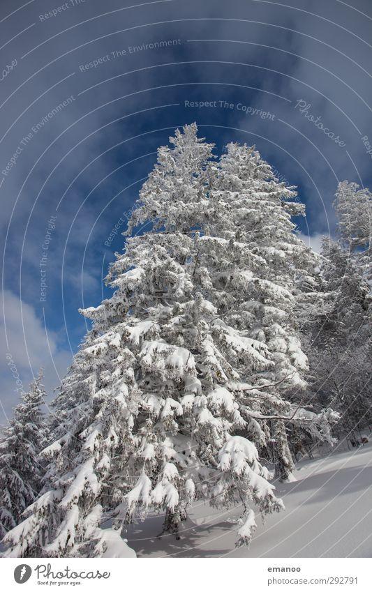 1000 üNN Himmel Natur Ferien & Urlaub & Reisen blau weiß Baum Landschaft Winter Wald Berge u. Gebirge kalt Umwelt Schnee Schneefall Wetter Eis